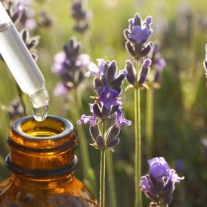 Lavender natural oils for allergies